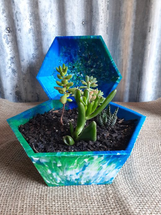 Pot Plant Hex Large