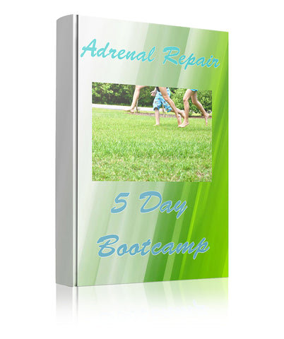 Adrenal Repair Bootcamp:  March 27 - 31, 2017
