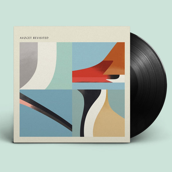 Various Artists - Avocet Revisited
