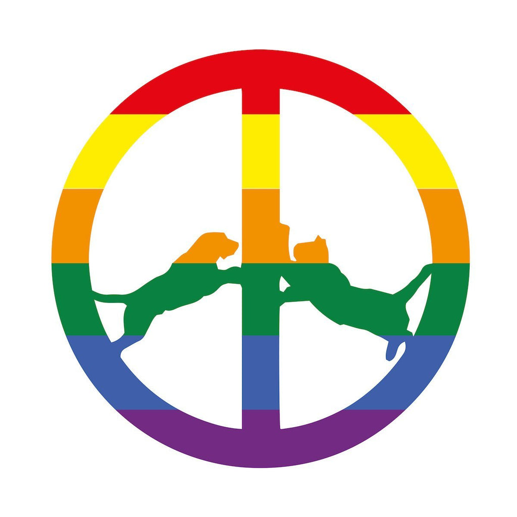 Hype Williams - Rainbow Edition