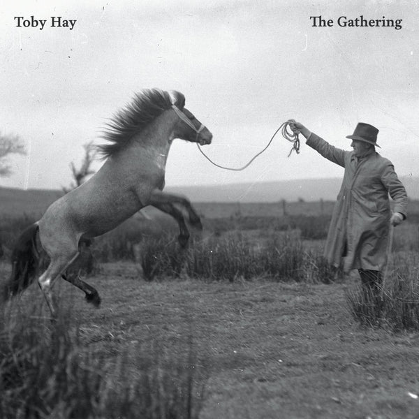 Toy Hay - The Gathering