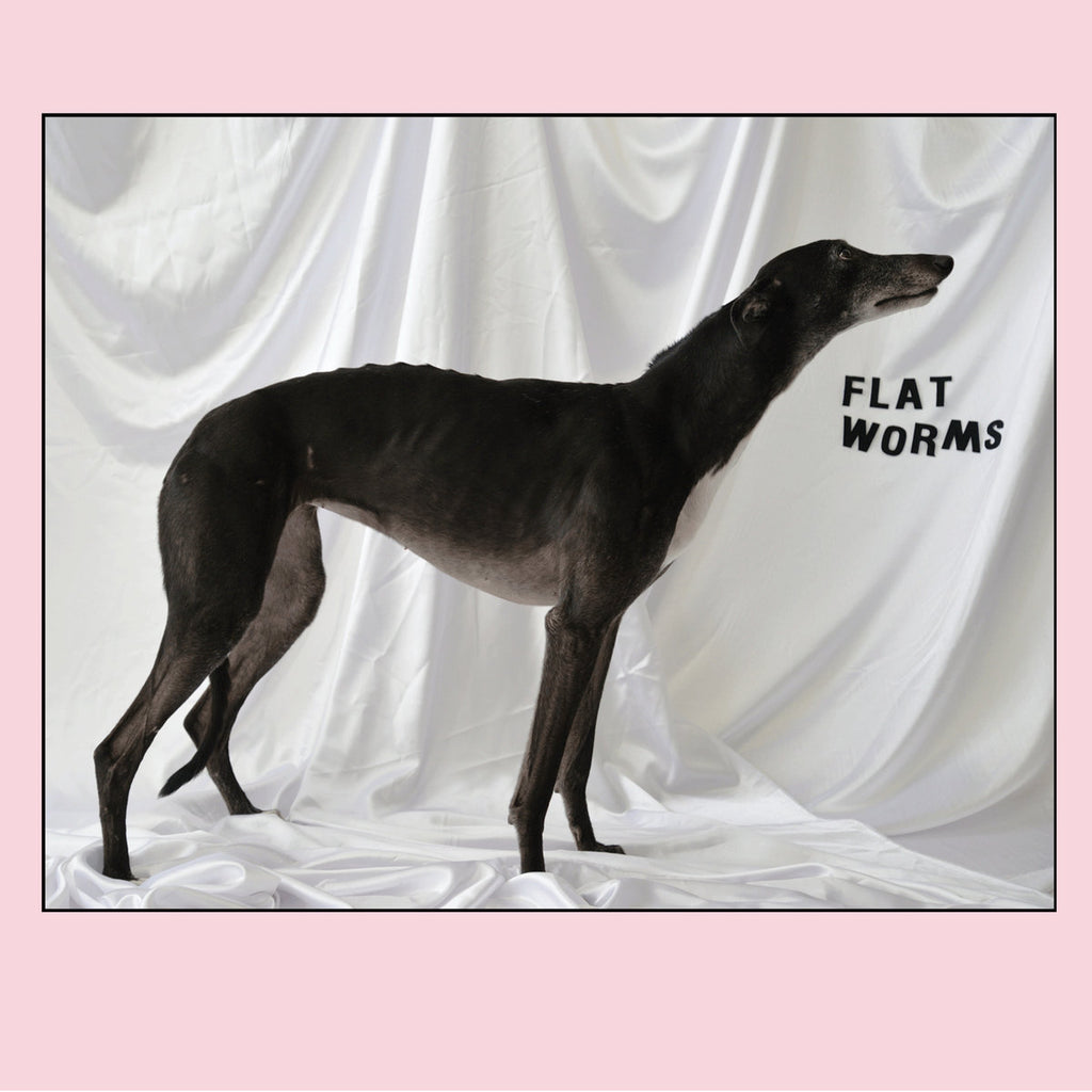 Flat Worms - Flat Worms - Drift Records