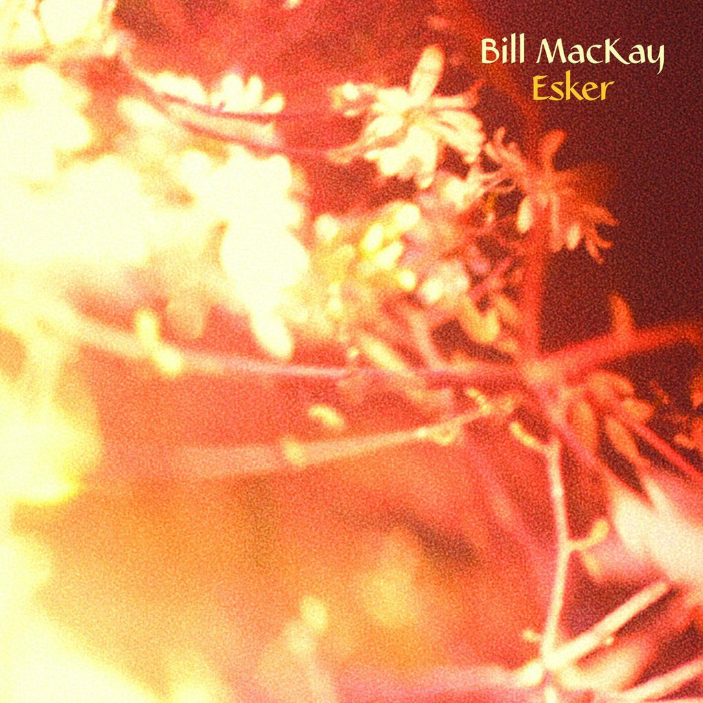 Bill MacKay - Esker - Drift Records