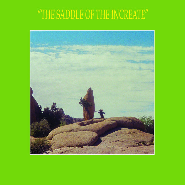 Sun Araw - The Saddle of The Increate