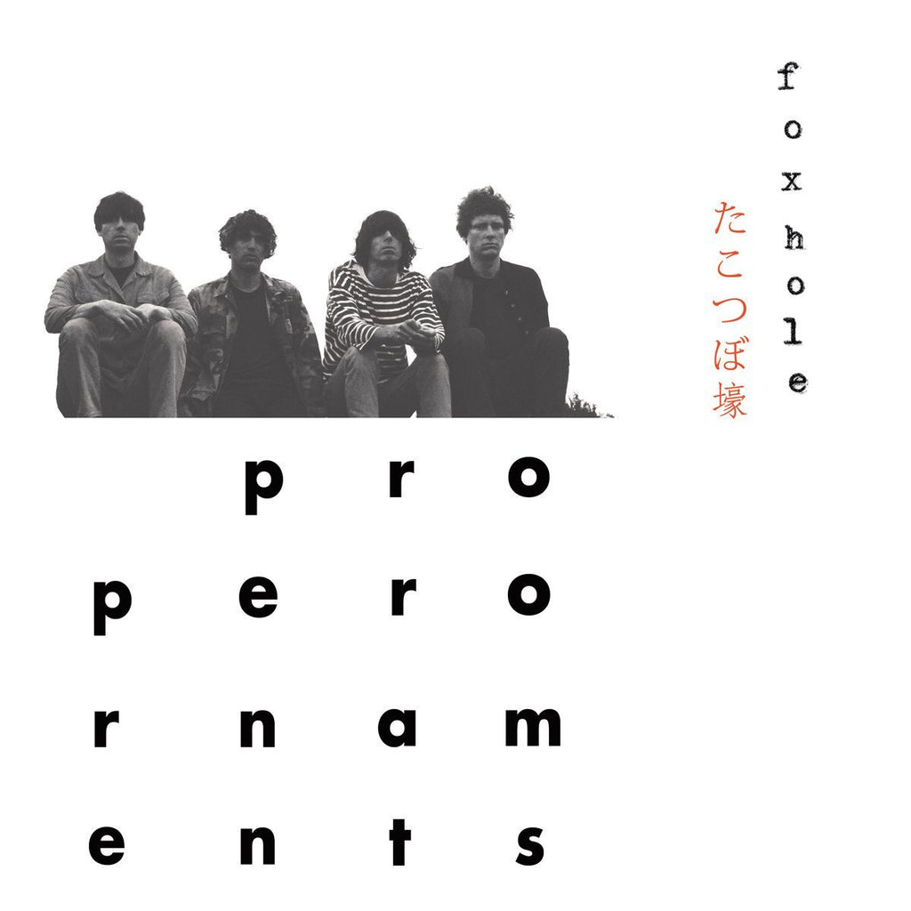 The Proper Ornaments - Foxhole