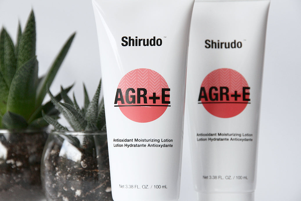 How to get the most out of Shirudo AGR+E ?