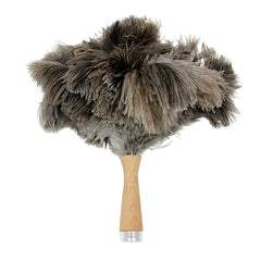 Small Feather Duster