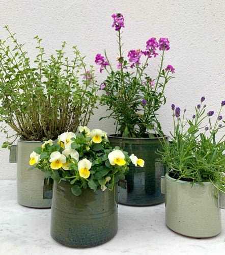 urban jungle flower pots in  grey  and green  large and  medium