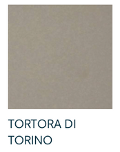 Load image into Gallery viewer, Tortora