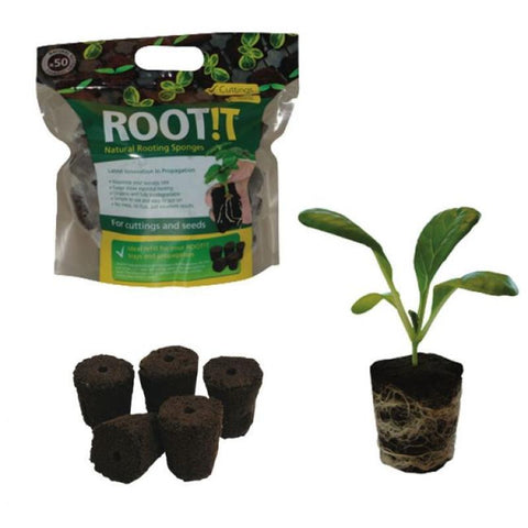 ROOTiT Natural Rooting Sponges 50 refill bags (0446)