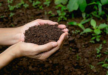Potting Soil & dry fertilizers