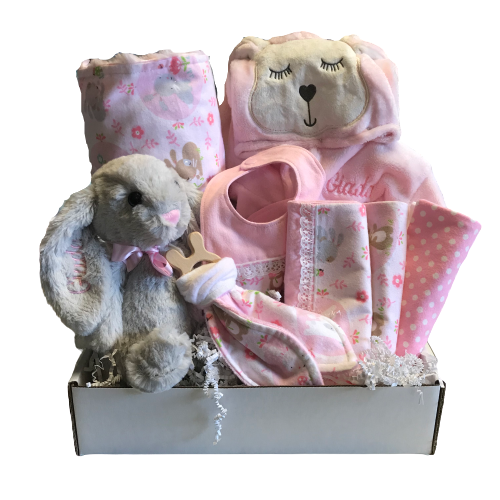 Baby Girl Gift Baskets