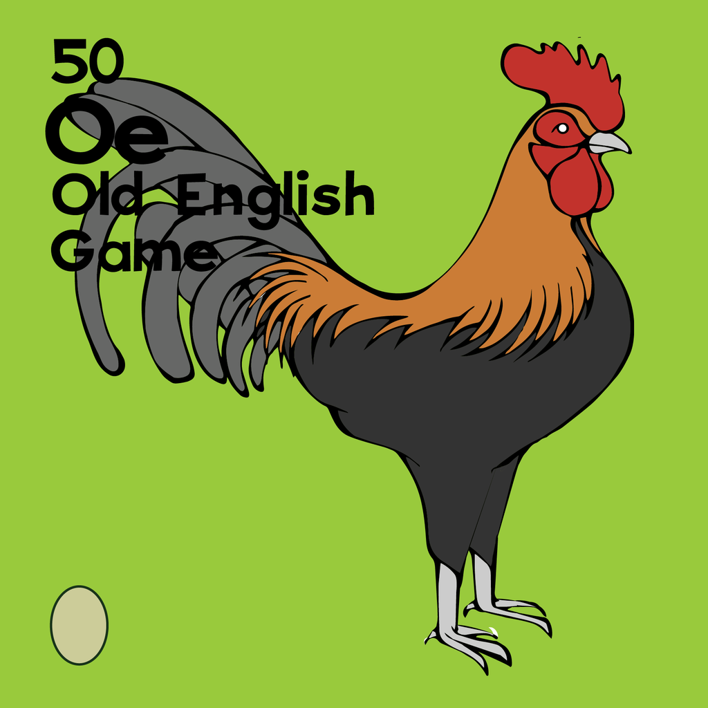 Old English Game