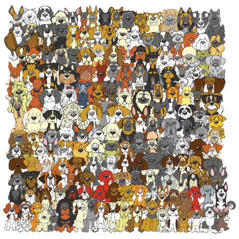 """Find the Panda"" Dog Edition Unframed Print"