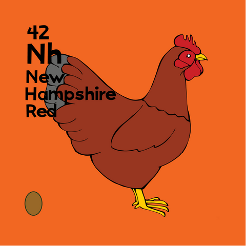 New Hampshire Red