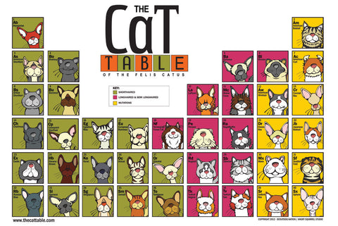 "The  ""Original"" Cat Table Poster"