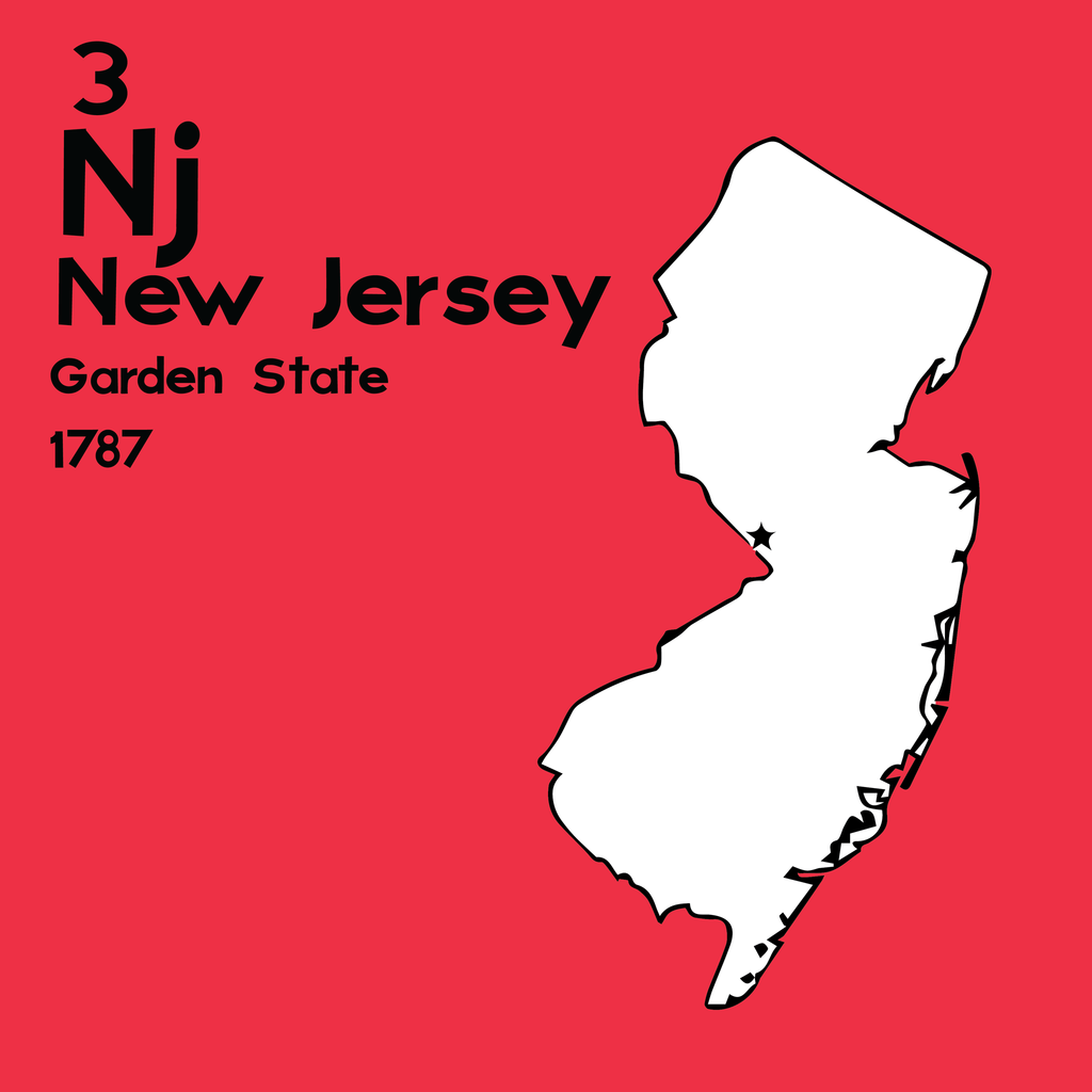 New Jersey  - Unframed 12x12 Print