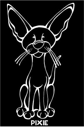 Devon Rex Decal