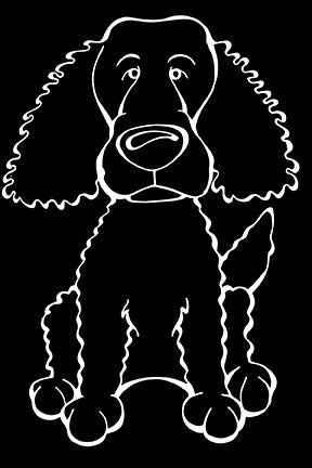 American Water Spaniel Decal Dog