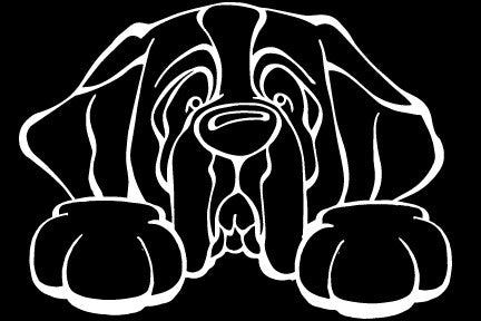Saint Bernard Paws Decal