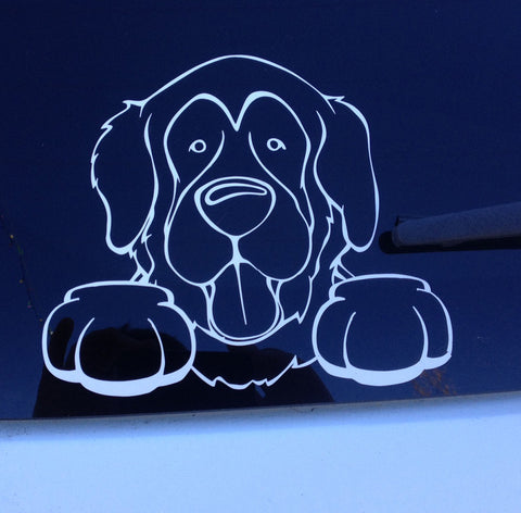Custom Decal