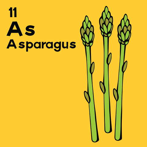 Asparagus - The Food Table - Unframed 12x12 Print