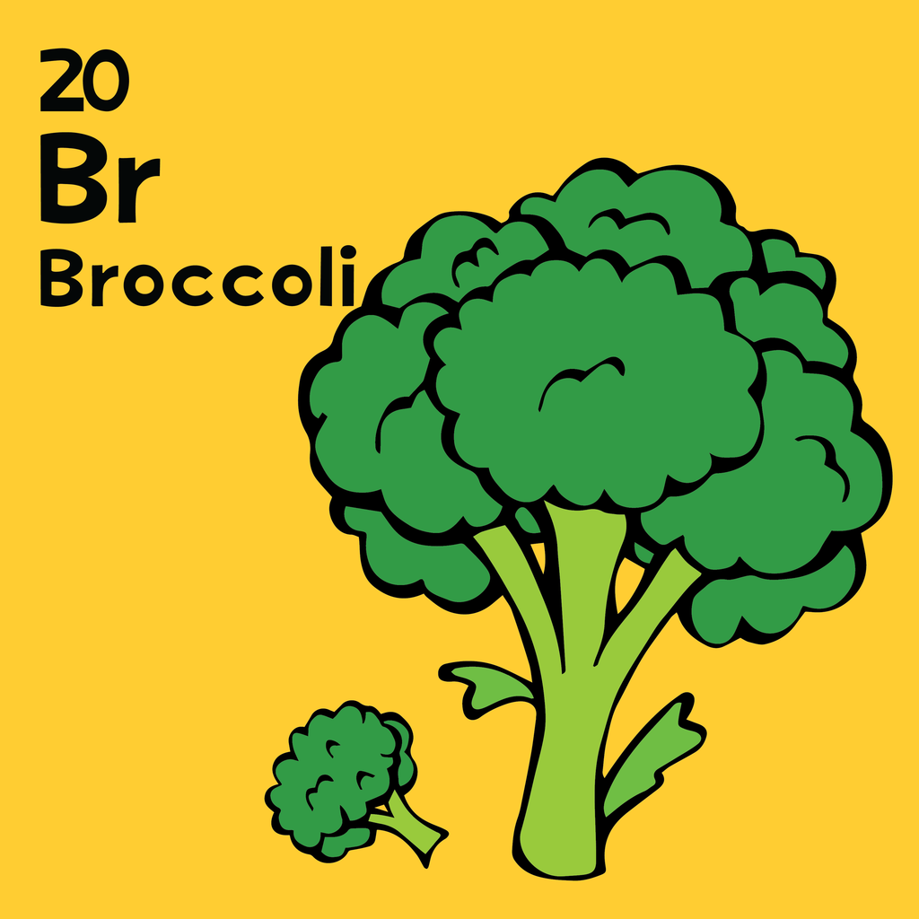 Broccolli - The Food Table - Unframed 12x12 Print