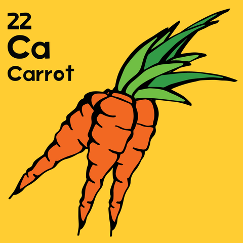 Carrot - The Food Table - Unframed 12x12 Print