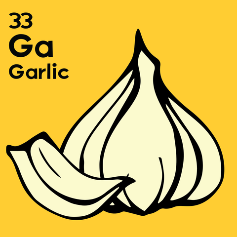 Garlic - The Food Table - Unframed 12x12 Print