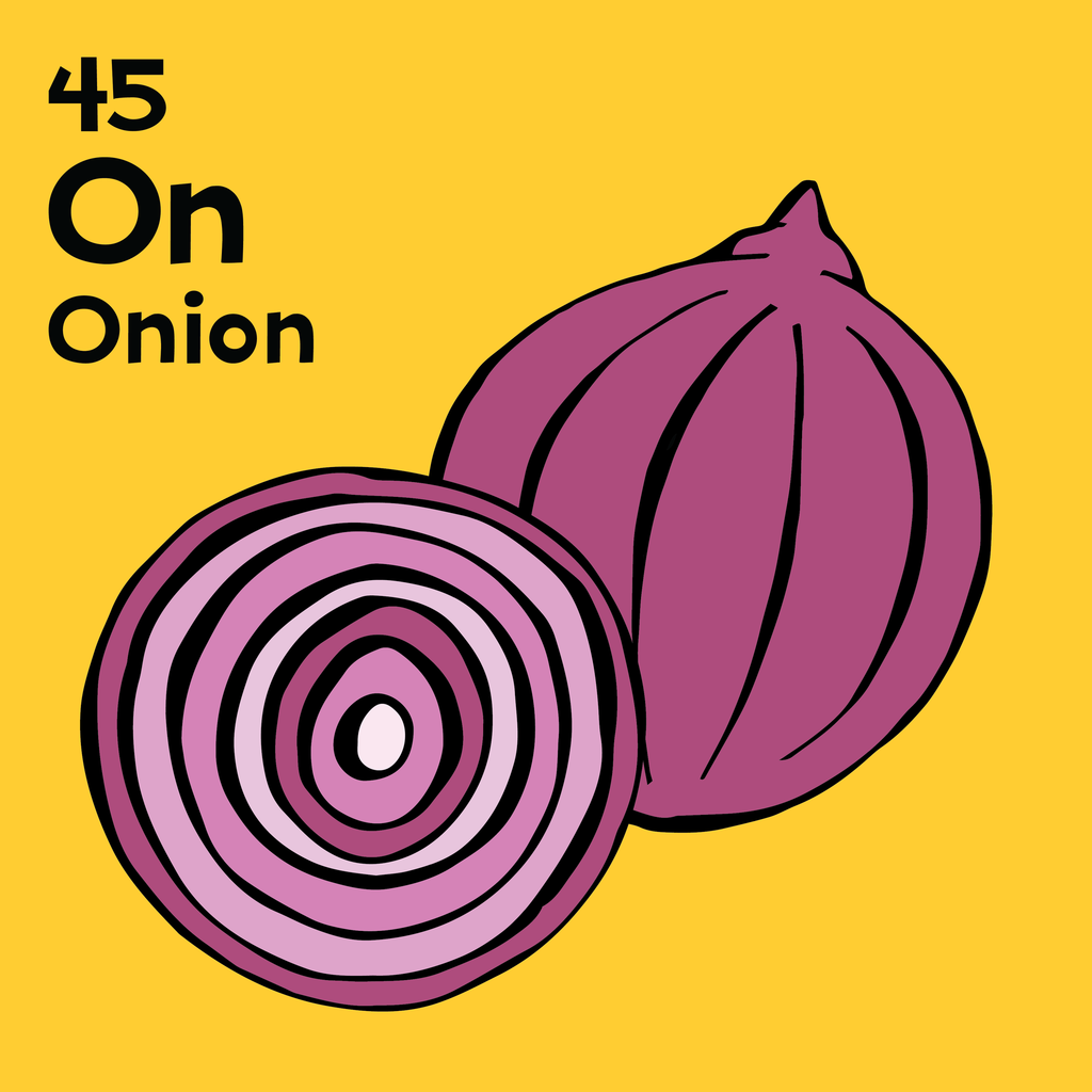 Onion - The Food Table - Unframed 12x12 Print