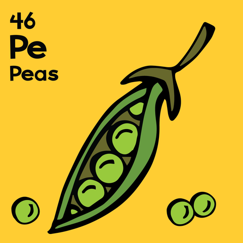 Peas - The Food Table - Unframed 12x12 Print