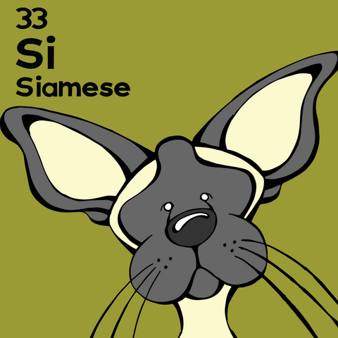 Siamese - The Cat Table - Unframed 12x12 Print