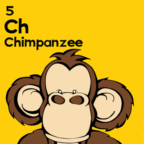 Chimp - The Animal Table - Unframed 12x12 Print