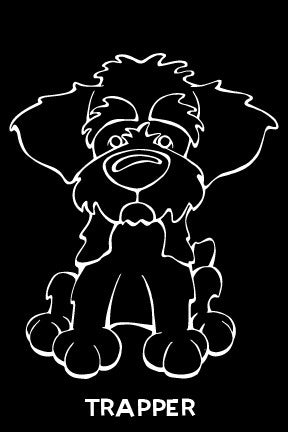 Schnoodle Decal Dog