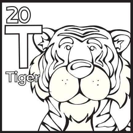 The Animal Alphabet Table Coloring Poster