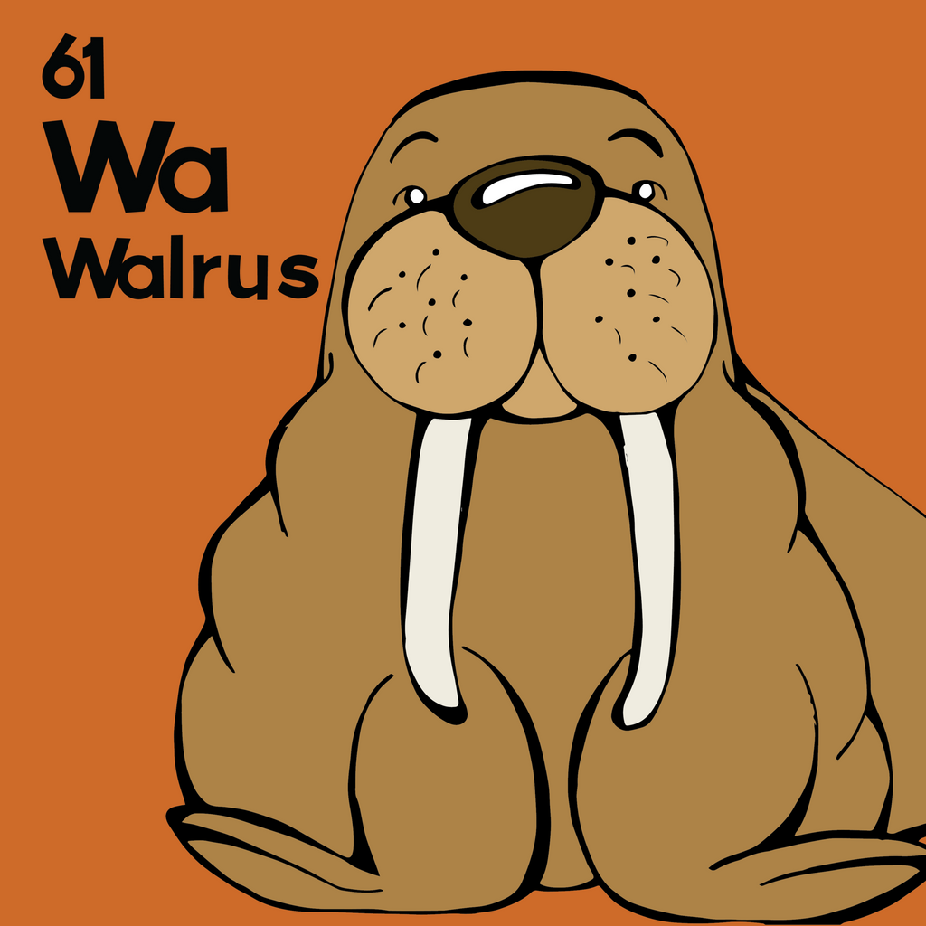 Walrus - The Animal Table - Unframed 12x12 Print