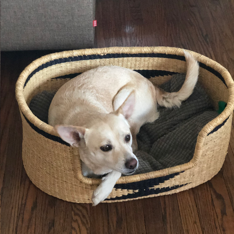 Dog Bed Basket - Large
