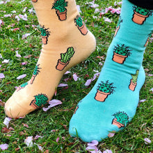 Load image into Gallery viewer, Cactus Socks