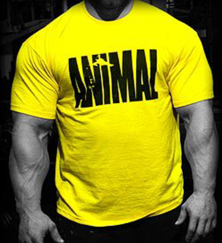 Picture of Animal Iconic Shirt - Yellow