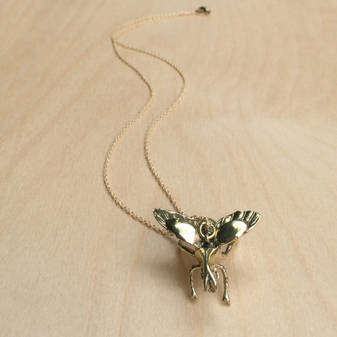 Beetle Brass Necklace