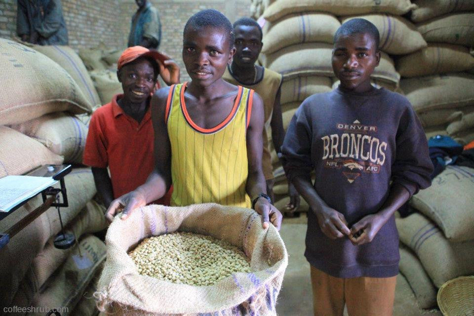 Burundi, Sogestal Kirimiro - Eternity Coffee Roasters