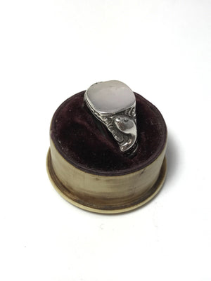 CLEO snake serpent signet ring box