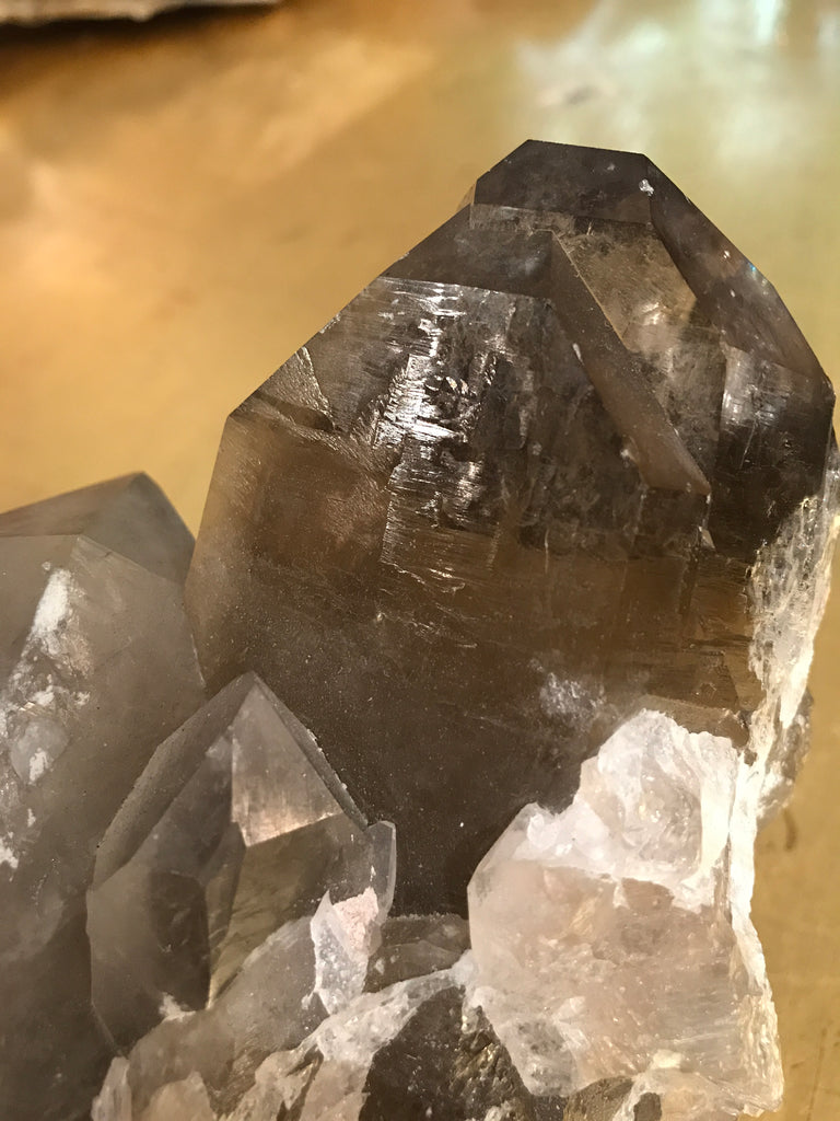 Smoky Quartz Crystal Cluster with Golden Rutiles