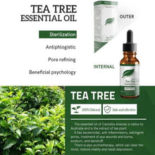 Load image into Gallery viewer, Tea Tree Pure Essential Oil