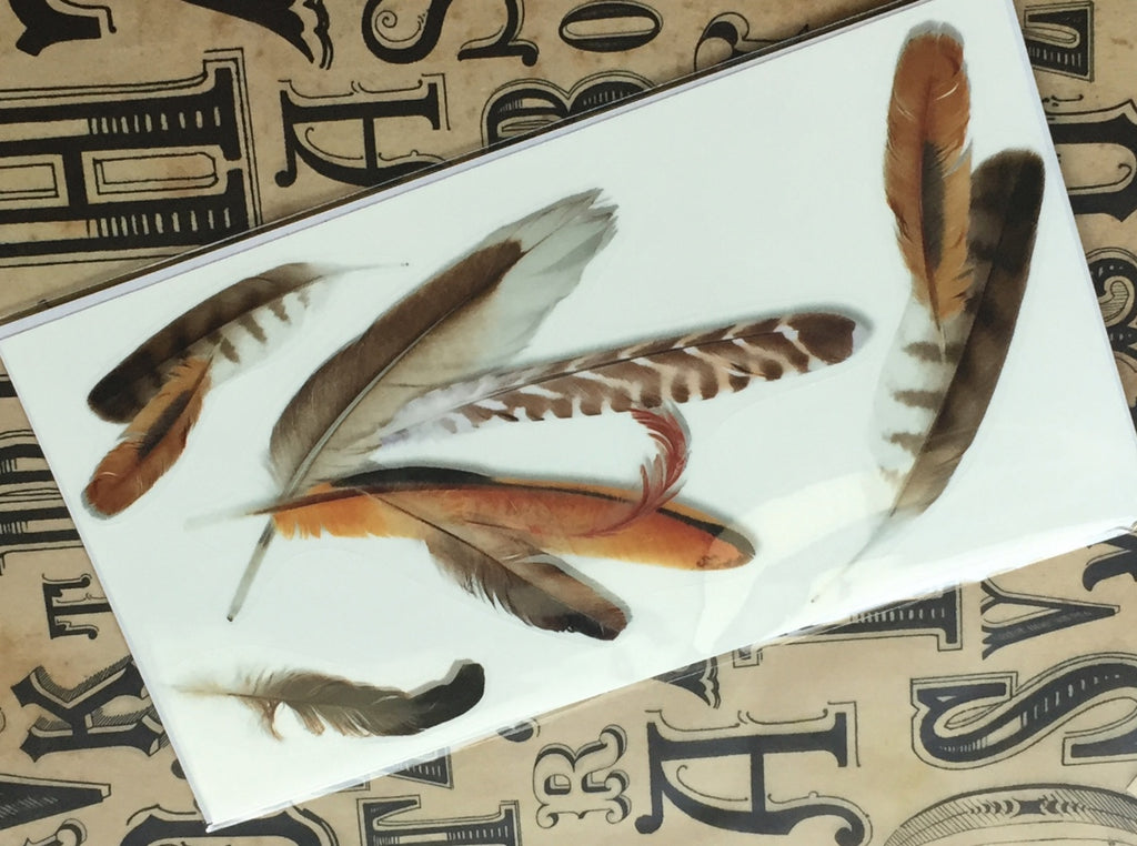 Feathers - Layer Graph Stickers - Inlay Stickers Jockomo