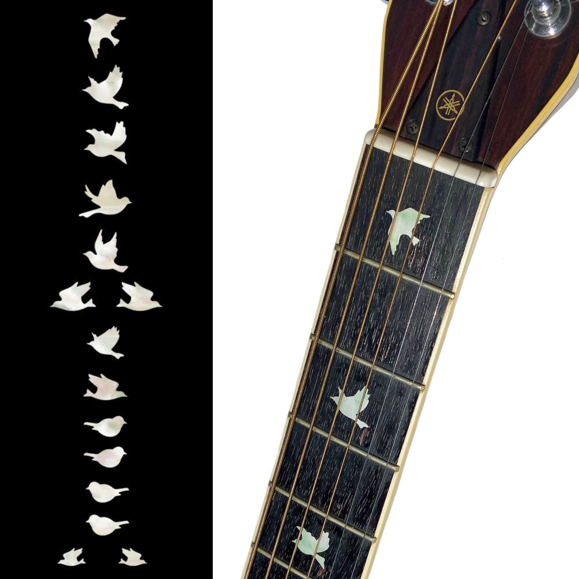 Dish F-006DT-WT Inlay Stickers WS TRAPEZOID Fret Markers