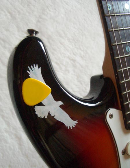 "Picks On Stickers ""Pick Holder"" Eagle 2sheets/pack - Inlay Stickers Jockomo"