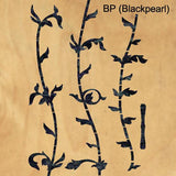 BP (Blackpearl)
