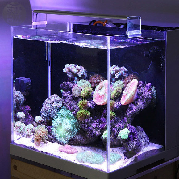 Marine LED Light for Coral Reef Tanks