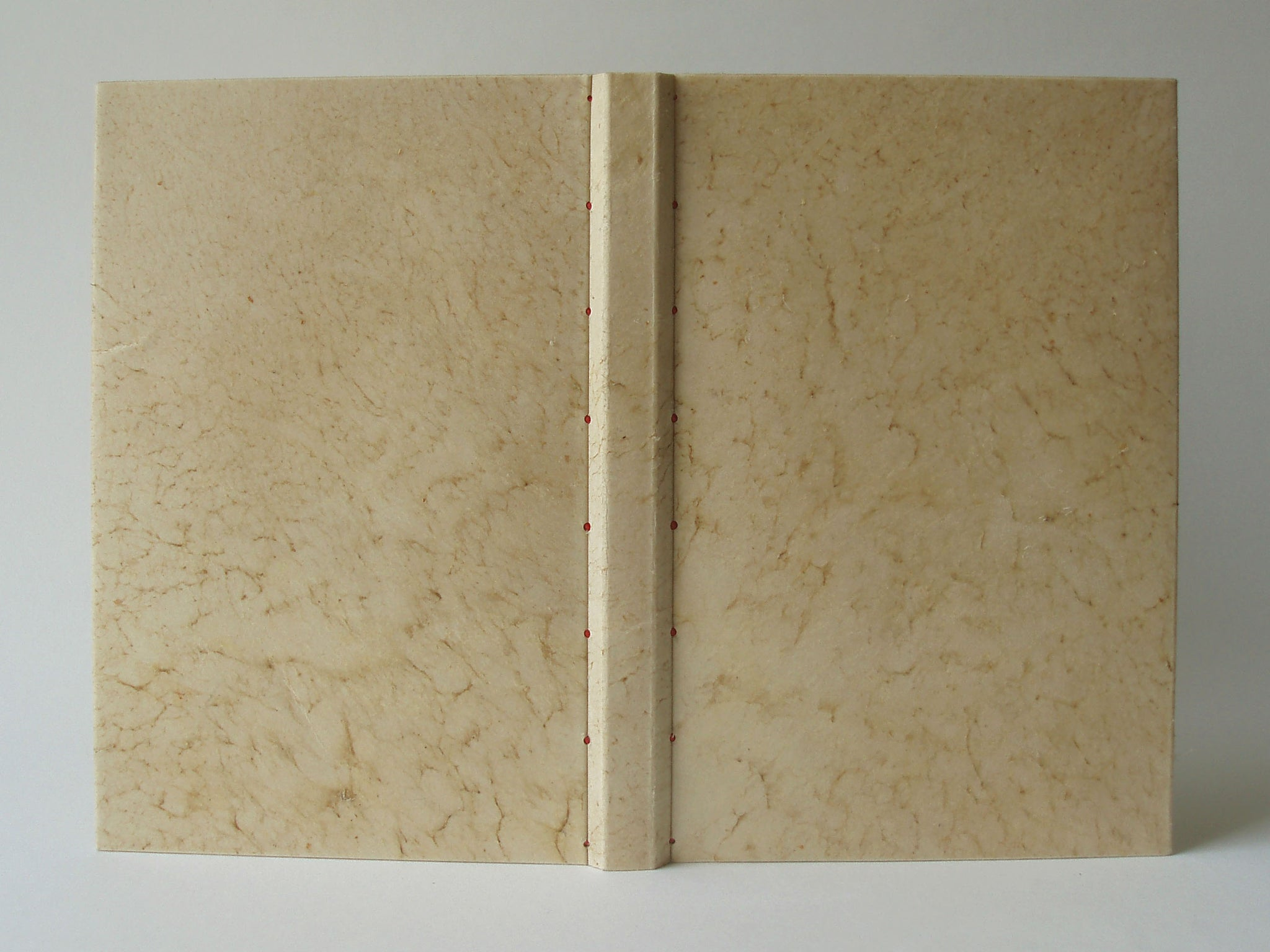 Vellum binding with sewn hinges